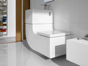 Roca-W-W-Eco-Friendly-Toilet