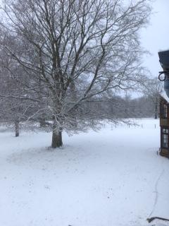 Snow at Brockwood