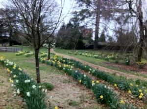 2013, Brockwood Park